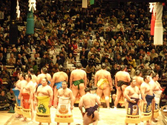 sumo wrestling tournament in tokyo japan