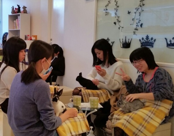most travel blogs recommend visiting a theme cafe on your 3 days in tokyo itinerary