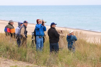 what to do in indiana dunes activities