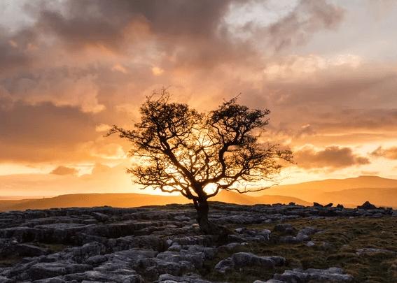 Brigantes   A Celtic Landscape