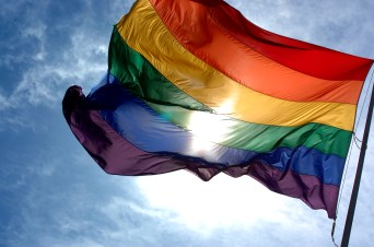Rainbow flag (Wikipedia)