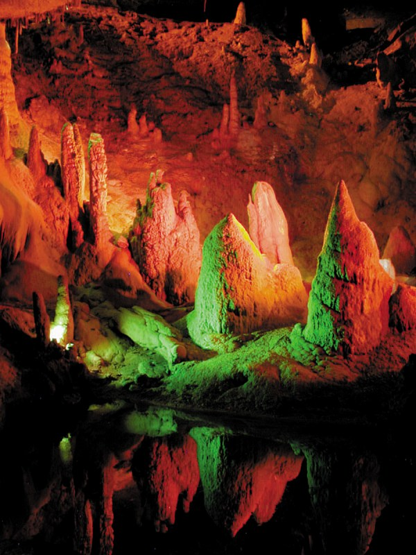 Forbidden Caverns - things to do in Sevierville