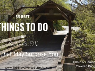 Things to do in Sevierville, TN