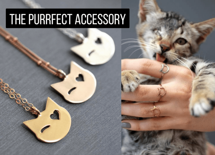 The Purrfect Accessory