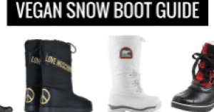 guide to vegan snow boots snowboots and shoes