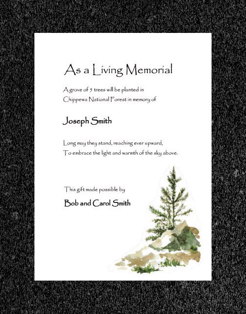 Memorial Trees Planted In US National Forests For You