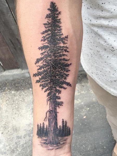 Evergreen Tree Tattoo : evergreen, tattoo, Intricate, Tattoos, Trend, Spotter