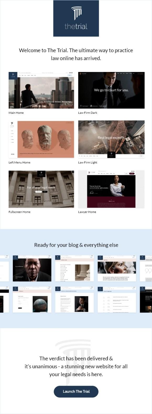 The Trial - Law WordPress Theme - 1
