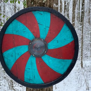 viking shield 1