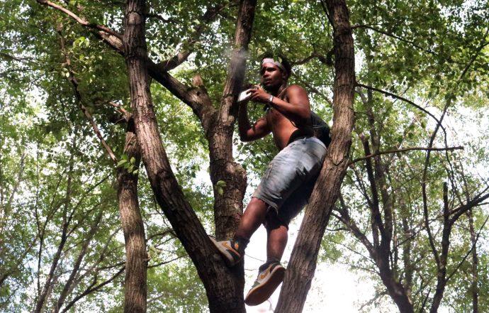 Tree climber watching G Herbo's show