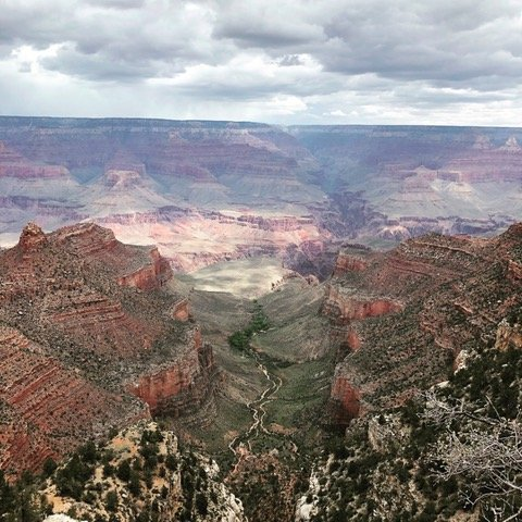 The Grand Canyon viewed from the Rim Trail