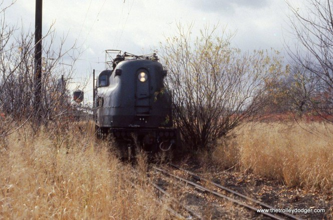Photo 14. NJT GG-1 4876 in the weeds at the South Amboy, NJ Engine Terminal. 11-7-81.