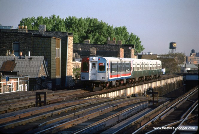 A six-car train of CTA 6000s, including two different color schemes, nears Armitage in May 1981. To the right is the ramp leading to the State Street Subway. (Mark Llanuza Photo)