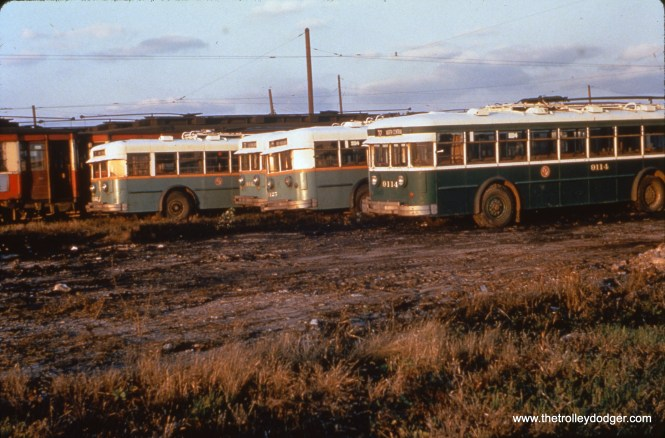 On October 31, 1954, we see some older trolley buses, including 9114, ready for scrapping at South Shops, along with some red Pullman streetcars. (William C. Hoffman Photo, William Shapotkin Collection)