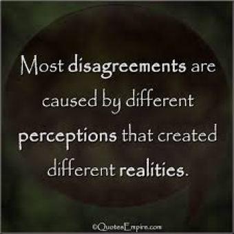 perception-reality