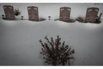 shafia-tombstones