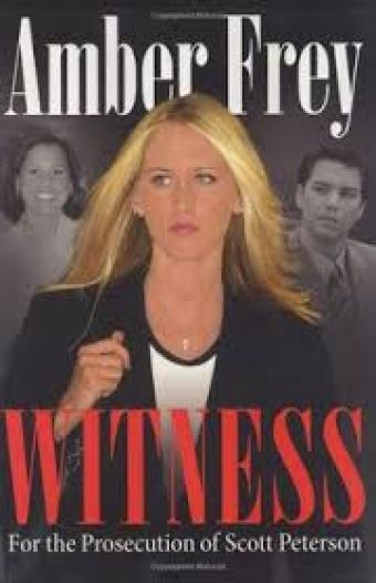 amber-fry-witness-book