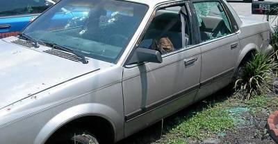 caroline-small-dead-in-her-car