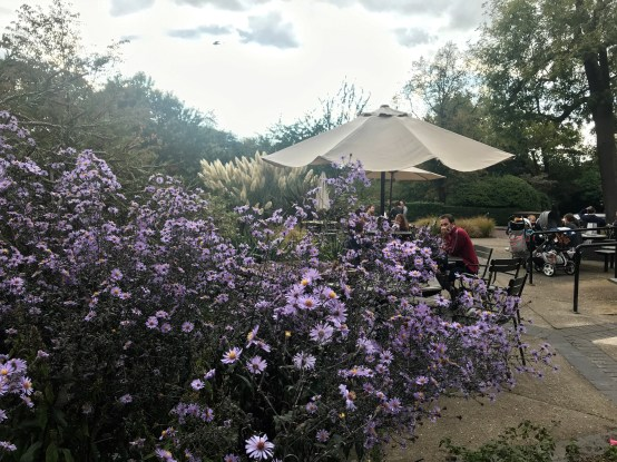Cafe Regents Park - Best Parks in London.