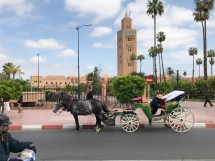 5 days in Marrakesh