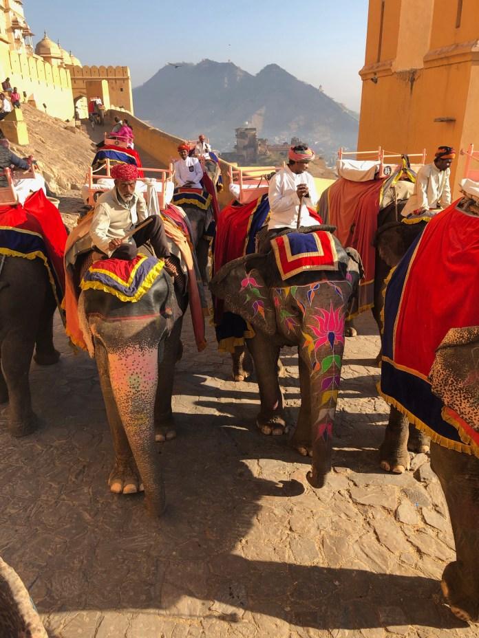Amer Fort elephant ride