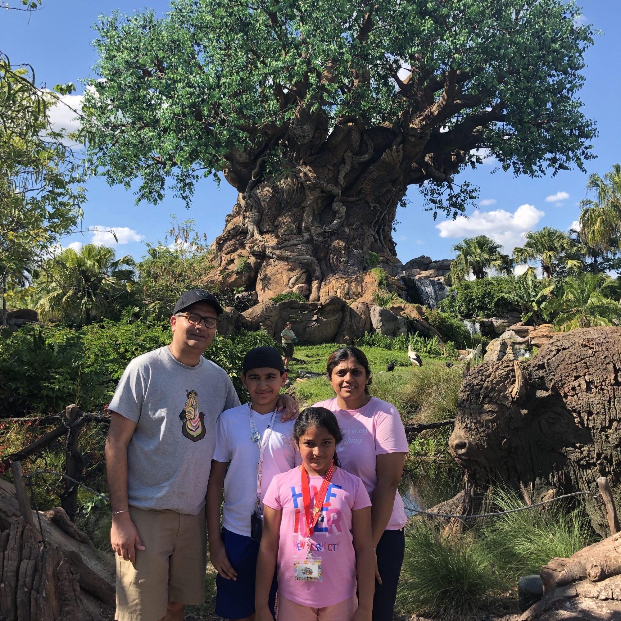 Disneyland first time - Best time to visit Disneyland.