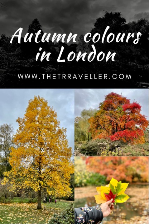 Best places to see Autumn colours near London.