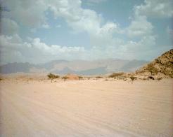 Sinaivalley