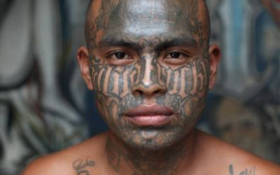 MS-13 Less Trouble To Dems Than Trump
