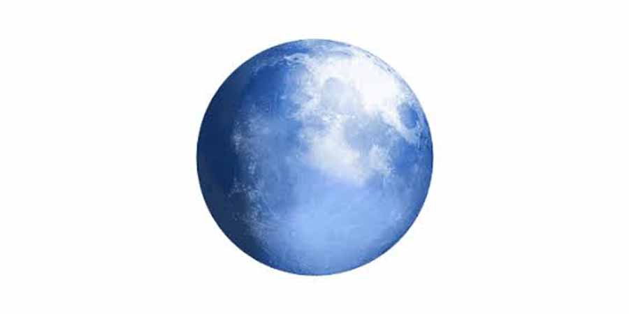 Pale Moon 28.12.0 (32-Bit)