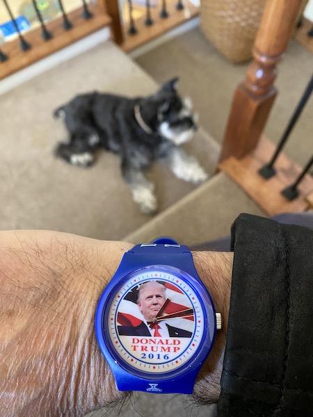 Donald Trump watch mit schnauzer