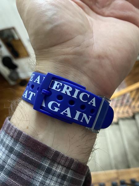 Erica Gain message on Trump 2016 watch