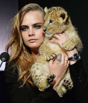 Cara Delevingne and lion