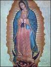Guadalupe_1