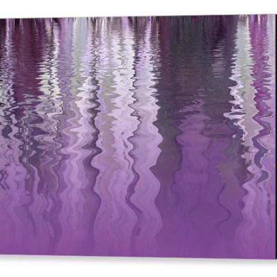 Purple Reflections by Gill Billington
