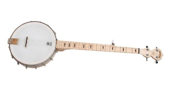 Deering Goodtime's best starter banjo