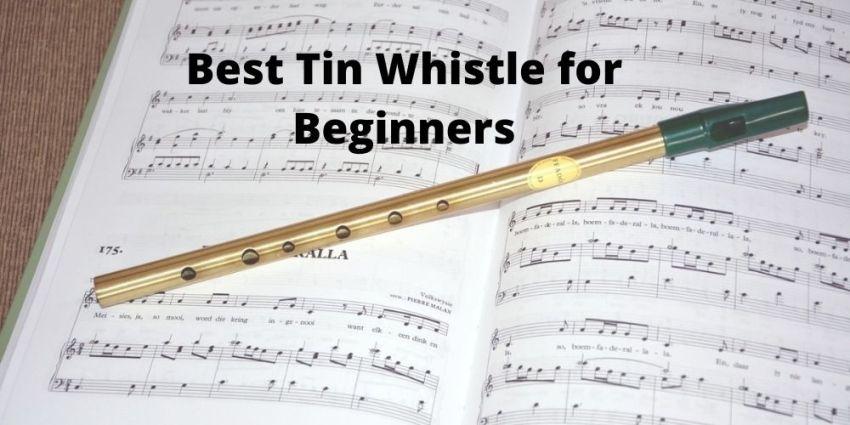 Best Tin Whistle for Beginners