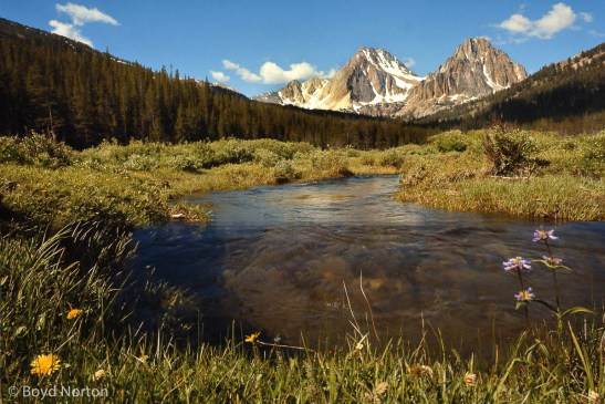 White Cloud Mountains, central Idaho; proposed wilderness area