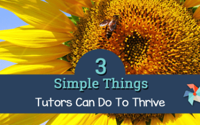 3 Simple Things Tutors Can Do to Thrive