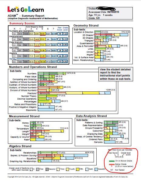 summary math report