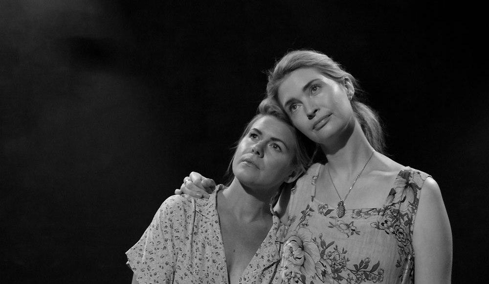 Fringe Fest '19 — TVO Final Recommendations | TheTVolution