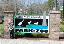 Cape May Park & Zoo