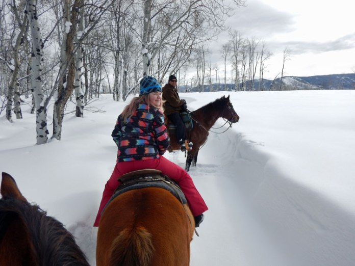 Horseback riding in Steamboat Springs, CO.