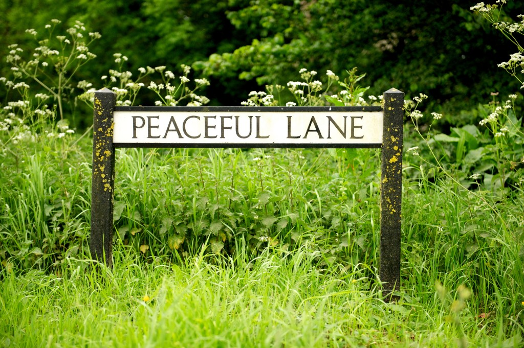 Peaceful Lane in Dorset sign post