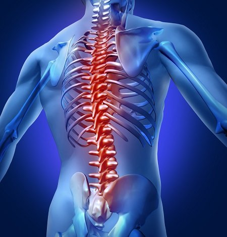 The Twyford Clinic Physio Back and Neck Pain