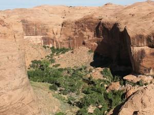 Coyote-Gulch-Canyon