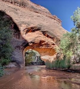 Coyote-Natural-Bridge