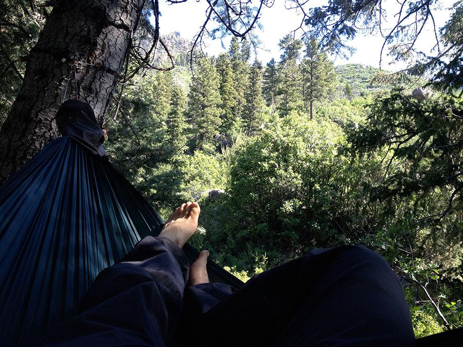 oak-grove-the-pines-hang