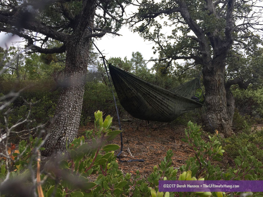rallt digital camo hammock 12 review  rallt digital camo hammock and ultralight straps   the      rh   theultimatehang