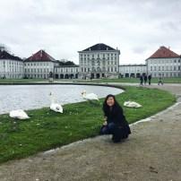 Swan squad